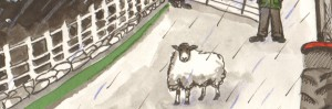cropped-sheep-on-pier1.jpg